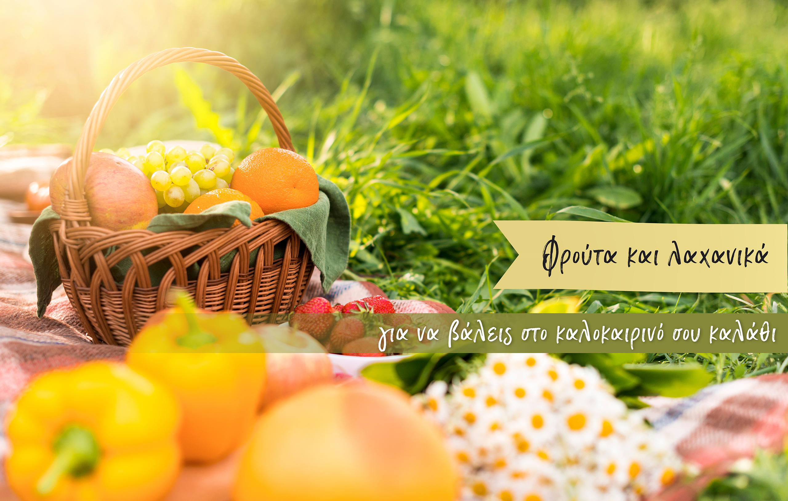 Picnic with a basket of fruits and vegetables